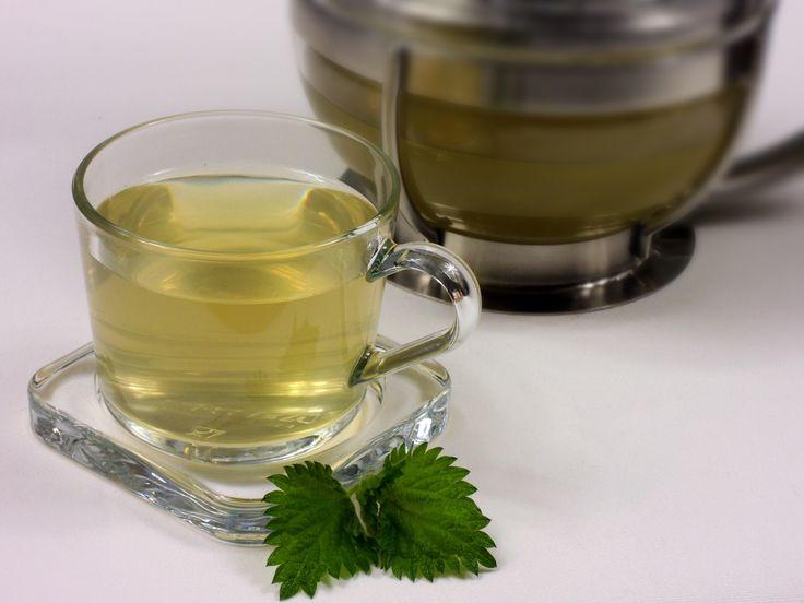 Zlatavý čaj z mladých lístků kopřivy žahavky oslazený medem chutná prostě bezvadně.