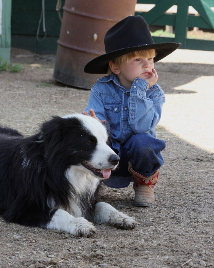 Little cowboys - with their best friend....this is a Border Collie.