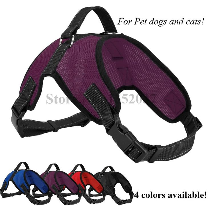 Free shipping Service Dog Soft  Mesh Vest Pet Dog Harness to dog collar and leash  Pet products Dog clothes purple color //Price: $10.95 & FREE Shipping //     #hashtag2
