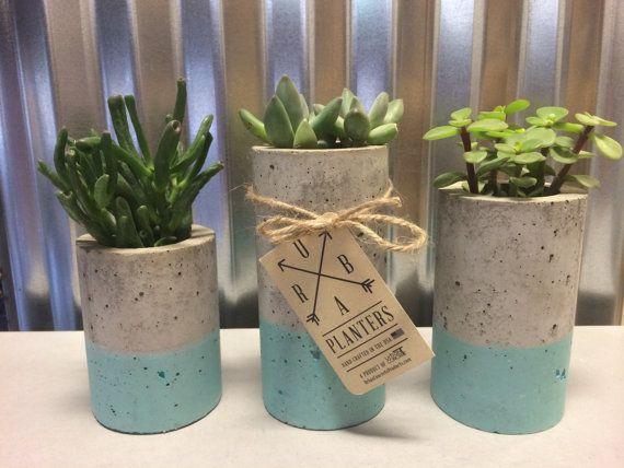 Ces jardinières béton sont conçus pour les plantes grasses ou plantes de lair. Chacun est fait à la main et teinté à la main. Comprend un ensemble de