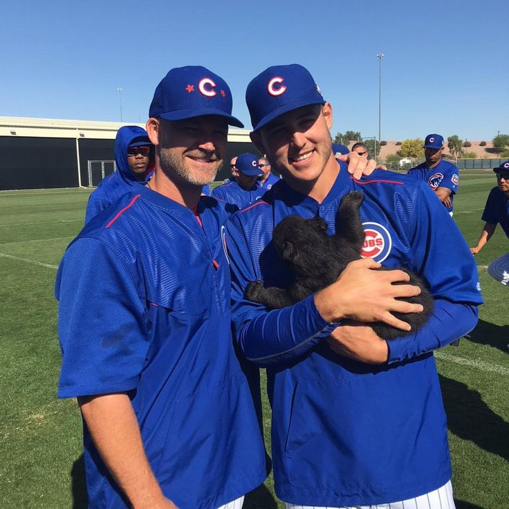 Instagram: Anthony Rizzo & David Ross with a bear cub.