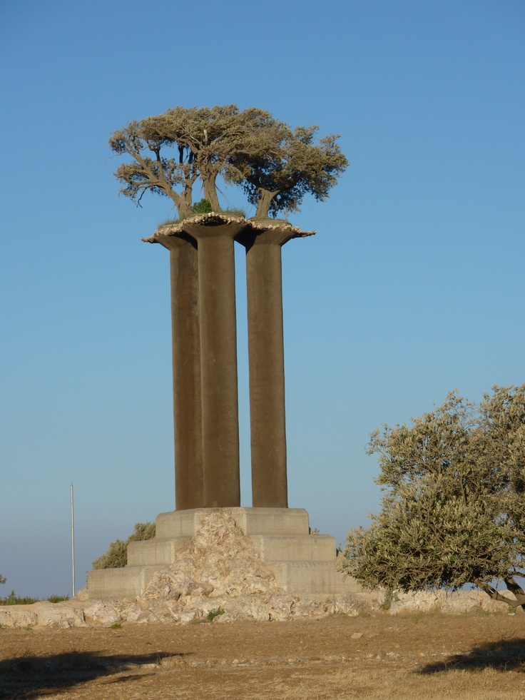 Jerusalem, monument - olive trees in search of peace - are ...