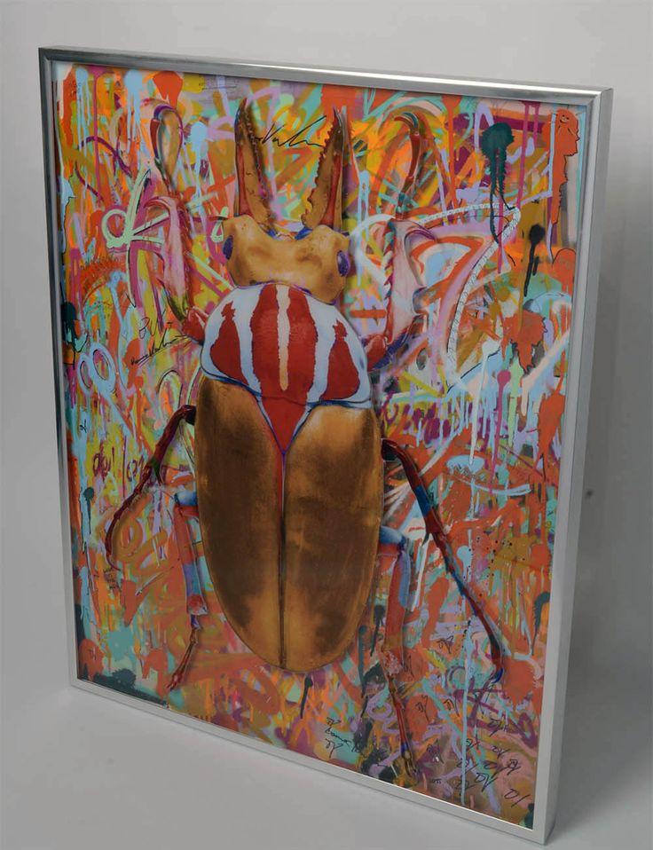Wallnuts www.dominicvonbern.com