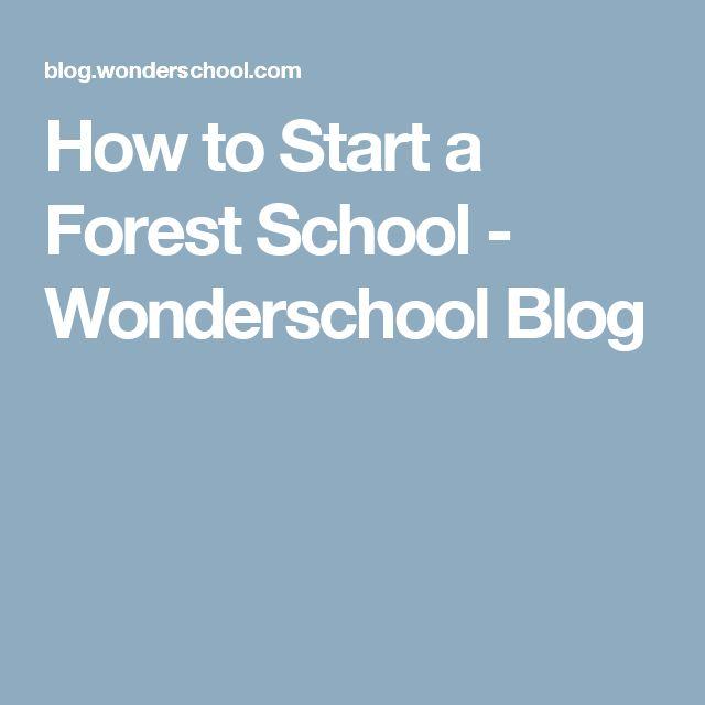 How to Start a Forest School - Wonderschool Blog