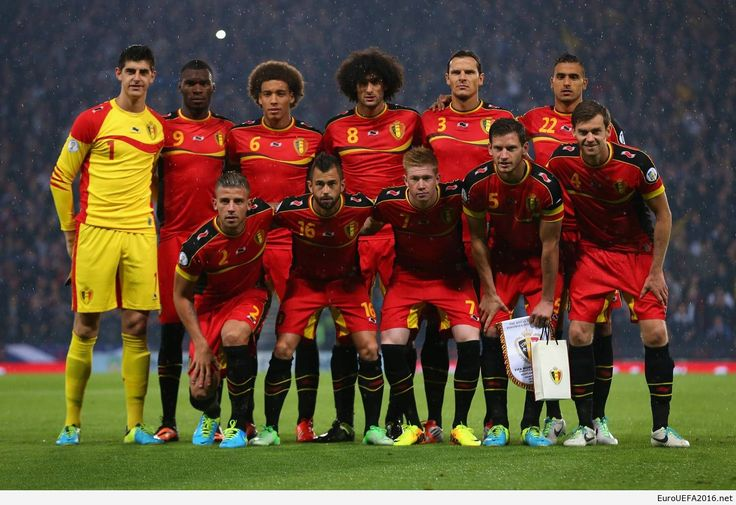 The Belgian national football team poses for a photograph before the 2014 World Cup Qualifying football match between Belgium and Serbia at the King Baudouin stadium in Brussels on June 7, 2013...