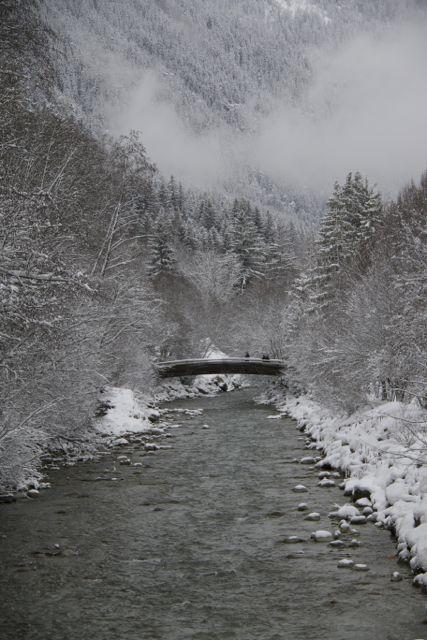 Ya de regreso, pero con los ojos llenos de imágenes maravillosas, como la de este puente de madera sobre el río Arveyron en los Alpes, ayer por la tarde, paseando bajo la nieve, al fondo los abetos de nuevo cubiertos…