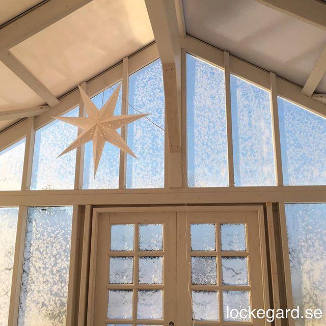 Även inne växthuset är det mysigt i adventstider. #lockegard #advent