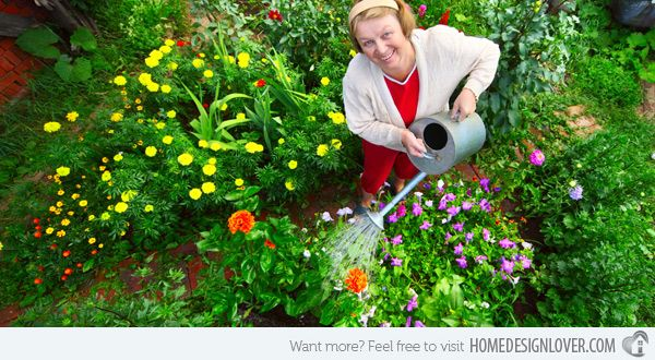 How to Maintain Your Home's Landscape