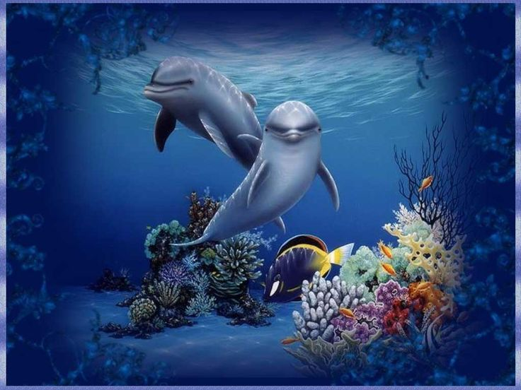 30 best Dolphin delights images on Pinterest Dolphins, Marine - marine mammal trainer sample resume