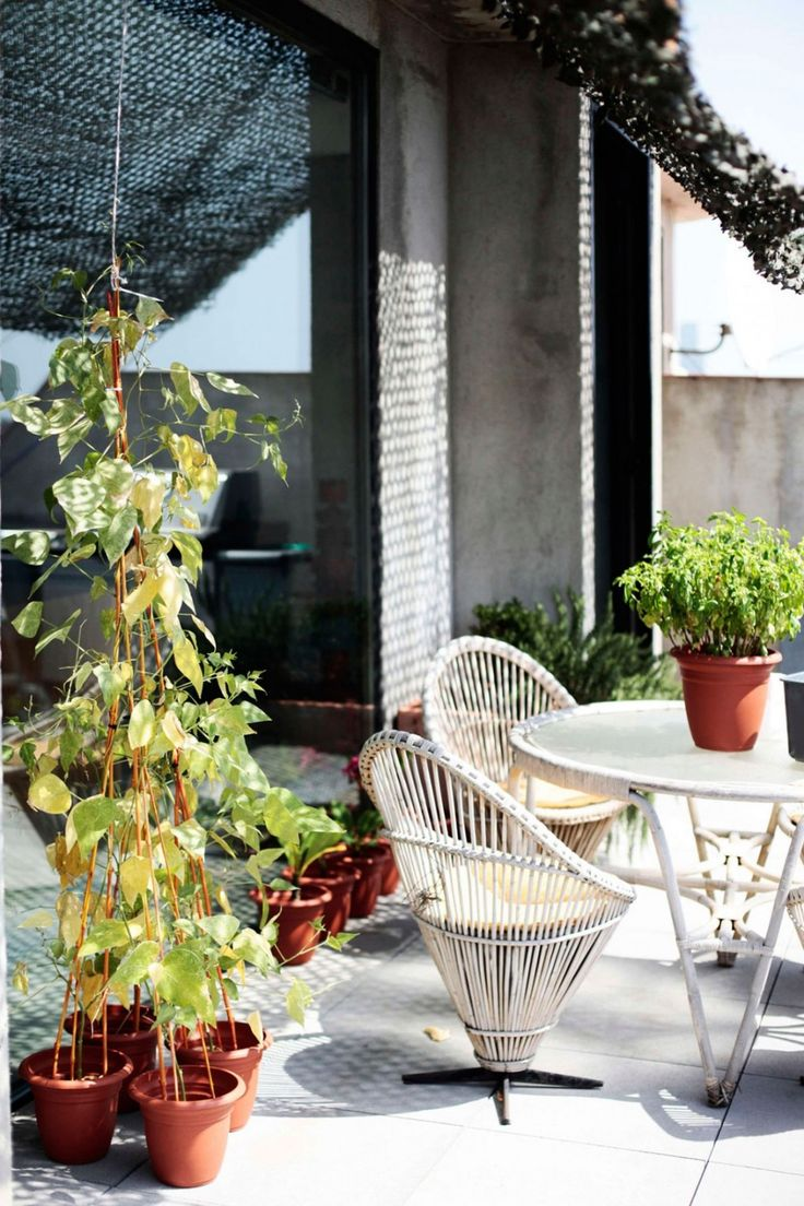 Loft: Spacious Pallars Loft Interior with Minimalist Style in Barcelona, Spain by KAYSERSTUDIO, Lovely Pallars Loft Balcony Decorating Idea by KAYSERSTUDIO with Green Plants and Vines in Red Pots and Classic Rattan Table and Chairs