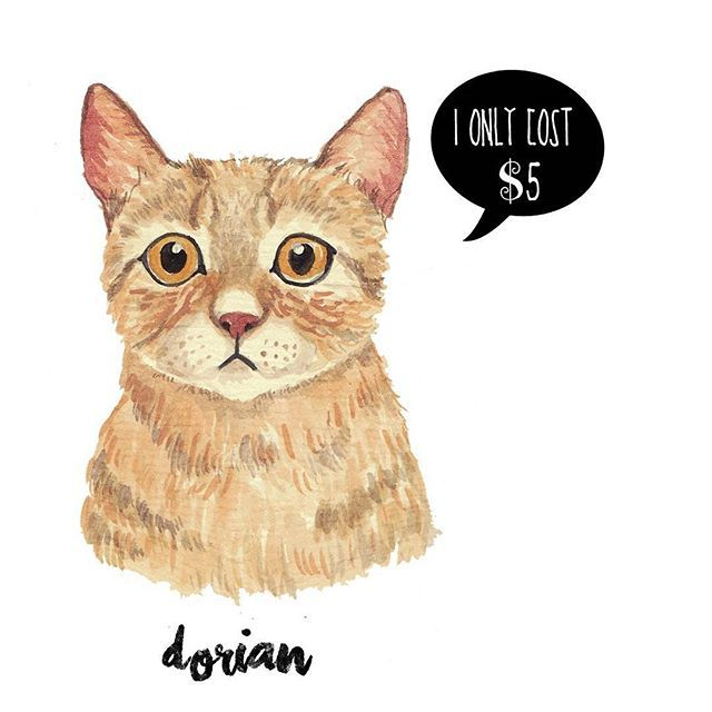 Some people ask me about the commissioned price. Here it is, watercolor pets full body is $10/figure. Close up is $5/figure. Visit my artpage for more informations and contact and send me the picture of your pets! I would love to draw it for you. Xoxo #petshop #pet #pets #petsdrawing #drawing #drawings #art #artist #watercolor #leo #cat #kitten #bengal #bengallover #illustration #infographic #animal #typography #graphicdesign  #gift #giftidea #birthdaygift