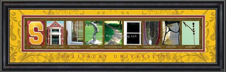 Salisbury University Campus Letter Art - $48.95