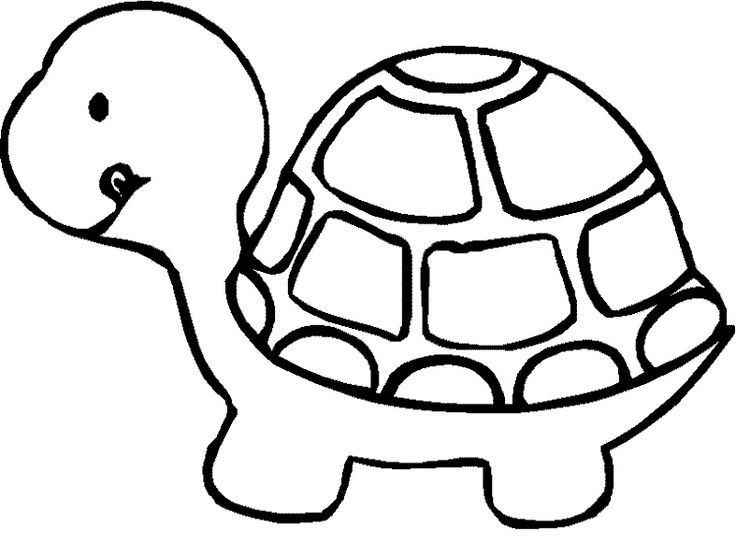 Turtle Smile Coloring Page