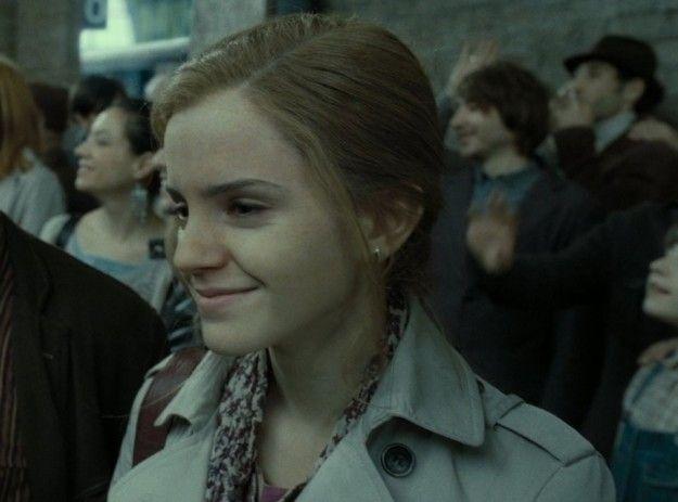Después de Hogwarts, Hermione trabajó para el Ministerio de magia en el Departamento para la regulación y el control de criaturas mágicas para obtener más derechos para los elfos domésticos y otras criaturas mágicas. Más tarde cambió al Departamento de aplicación de las leyes mágicas.