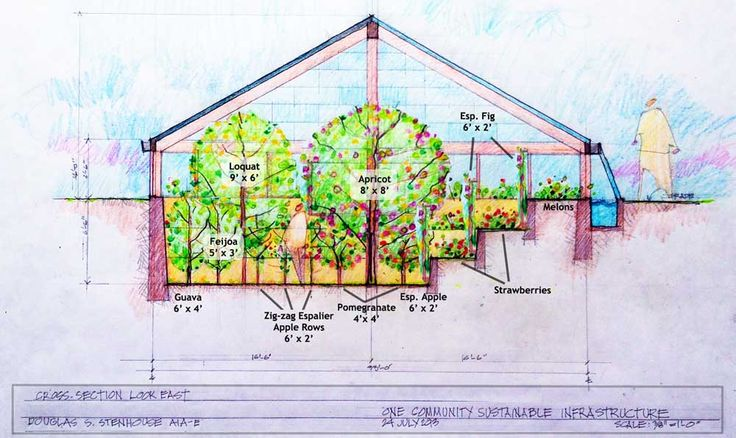 This page is the open source project-launch blueprinting page specific to the free-sharing and global collaboration regarding the One Community Walipini, Aquapini, and Zen Aquapini planting and harvesting details. These structures will adhere to our botanical garden guidelines while demonstrating 4 distinctly different growing zones that will produce a combination of quality, volume, and food diversity that significantly exceeds what is available in most grocery stores.