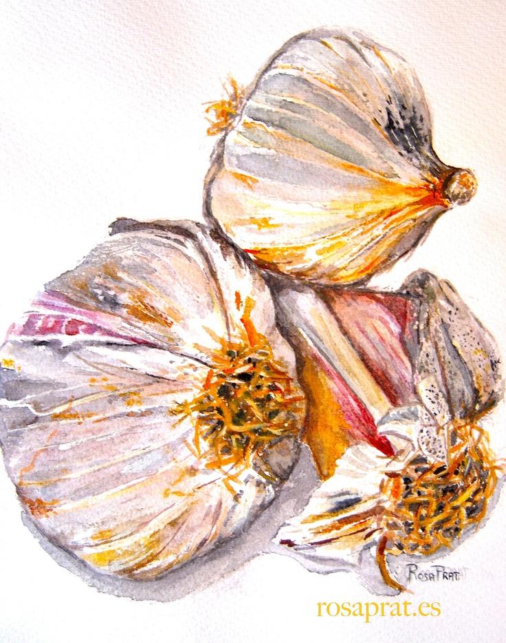 Ajos.  Garlics   Acuarela.Watercolor.