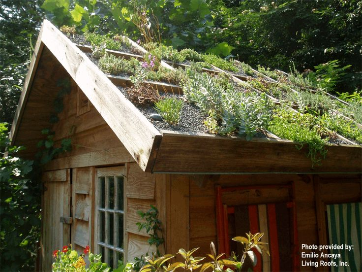 105 best sheds ideas images on Pinterest Sheds Carpentry and