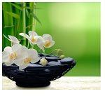 Huis en tuin inrichten met Feng Shui
