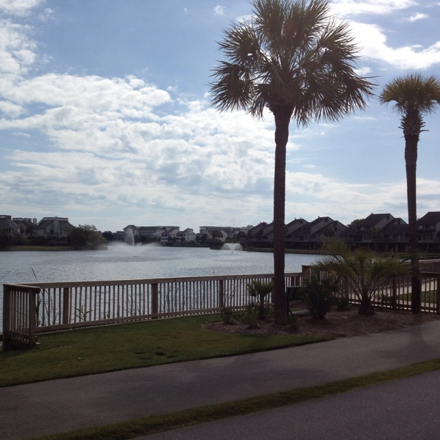 Pawleys Island Beach: 17 Best Images About Pawleys Island / Litchfield By The