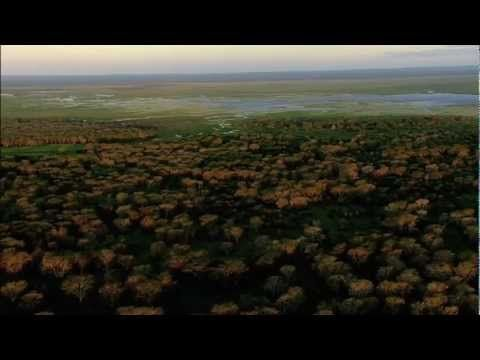 'Africa's Lost Eden' Trailer! Gorongosa National Park, Mozambique! http://www.conciergequestionnaire.com/q.php?id=474