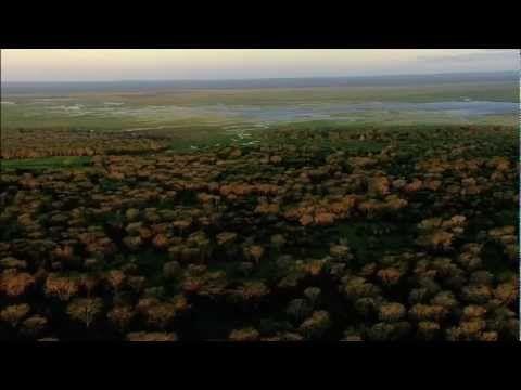'Africa's Lost Eden' Trailer! Gorongosa National Park, Mozambique! http://www.conciergequestionnaire.com/q.php?id=474