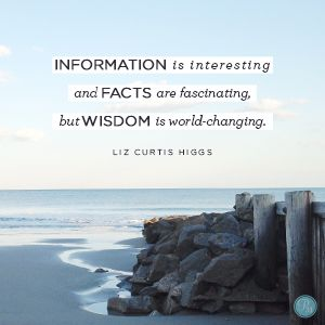 """Information is interesting and facts are fascinating, but wisdom is world-changing."" Liz Curtis Higgs // As the real-life queen of Sheba discovered, true wisdom makes all the difference. CLICK to be inspired."