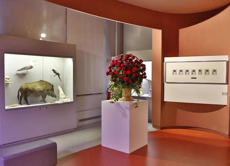Francesco Vezzoli, Flower Arrangement (Homage to Bruce Nauman), 2004