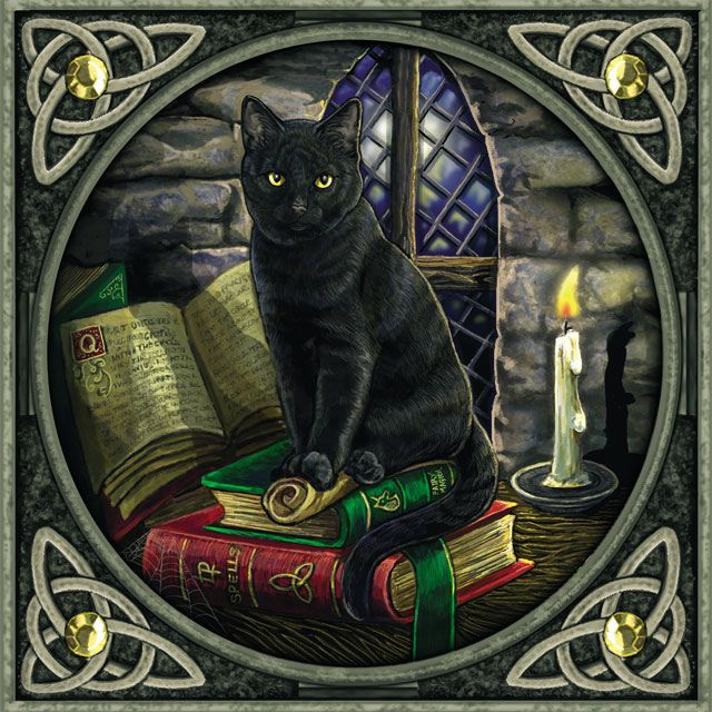 witches-black-cat-on-spellbooks-greeting-card-2065-p