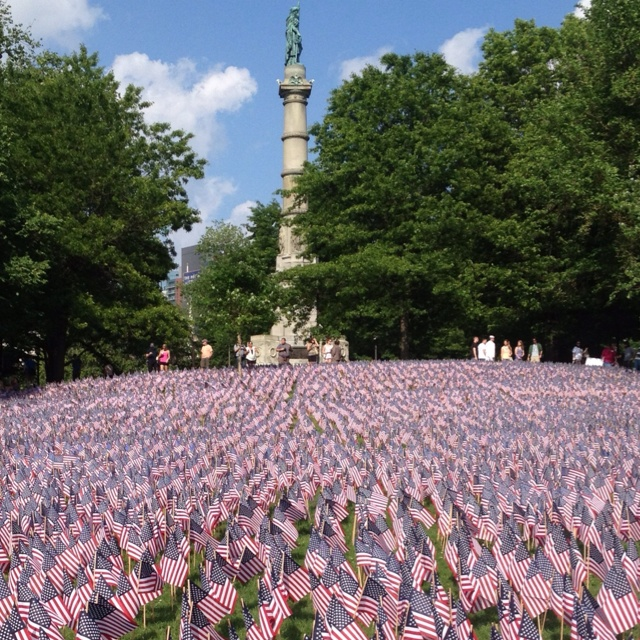common memorial day flowers