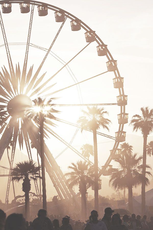 Life's better at a festival ☼ #festival #palms #california #coachella #love  – M J