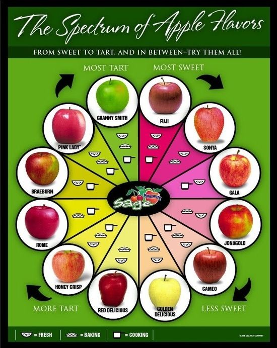 Apple chart for Cadette Tree Badge.  Might also help with the New Cuisines Badge