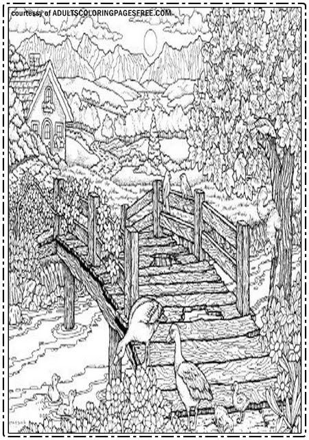 bridge in the villages adults coloring pages free will show you the wonder of countryside. Black Bedroom Furniture Sets. Home Design Ideas