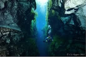 Image result for piccaninnie ponds
