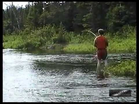 """""""Salmon Fishing Up Lower Jonathan's Brook""""...The Smeatons of Gander Newfoundland embark on a day long Scanoe trip up the Lower Jonathan's Brook near Jonathan's Pond Park in Gander Bay... Join ten of the Smeaton's as they try the Brooks and Ponds for Trout and Salmon..."""