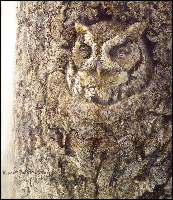 89 best robert bateman images on pinterest wildlife art art paintings and animal paintings. Black Bedroom Furniture Sets. Home Design Ideas