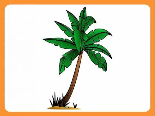 Epic Wandtattoo Wallprint Kinderzimmer Palme Strand Dschungel XXXL