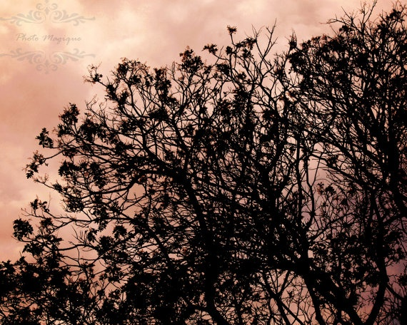 Pink Shadowhunter Tree Silhouette Grey Sky 8x10 by PhotoMagique, $4.00 #CityofBones #MortalInstruments