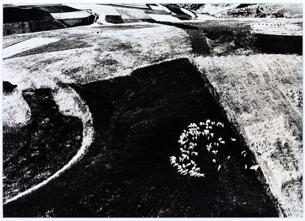 The work of Mario Giacomelli