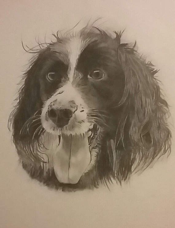 Check out this item in my Etsy shop https://www.etsy.com/uk/listing/509243392/original-pet-portraits-drawn-to-order