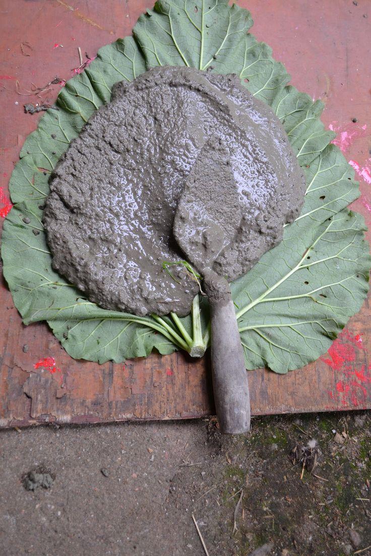 Blogia eläimellisestä menosta: Raparperinlehdet betonista