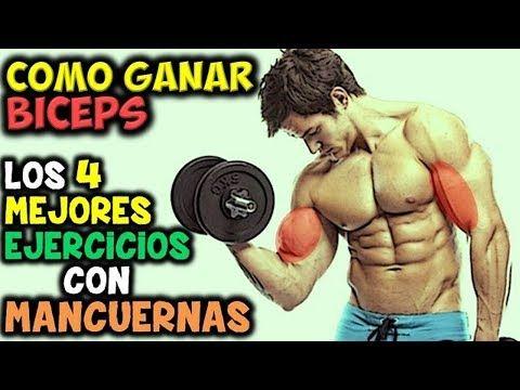 Los 4 Mejores Ejercicios Con Mancuernas Para Tener Biceps Grandes Y Musculoso Ejercicios Con Mancuernas Mejores Ejercicios Para Biceps Ejercicios De Biceps