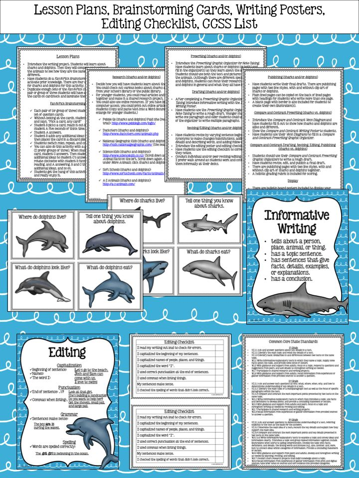 compare contrast essay sharks dolphins Evolutionary biology that have begun to reevaluate the role of compare contrast essay sharks dolphins the organism in the about us.