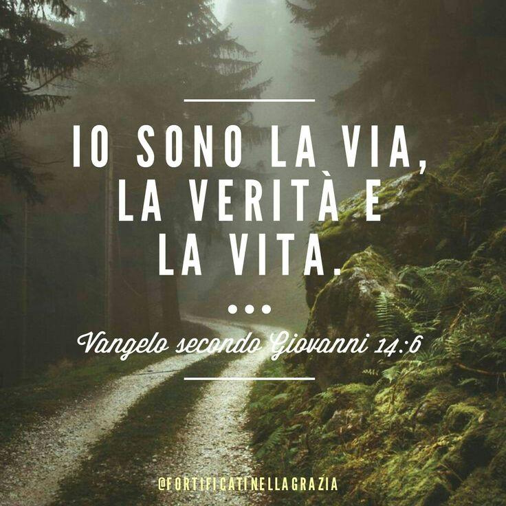 #Vangelo #Gesù #Jesus #citazionibibliche #bibbia #citazioni#frasibibliche #GrazieGesù #fede #cristianesimo #salvezza #fortificatinellagrazia