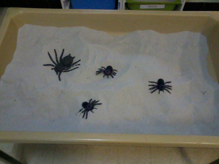 Spinnen in de zandbak