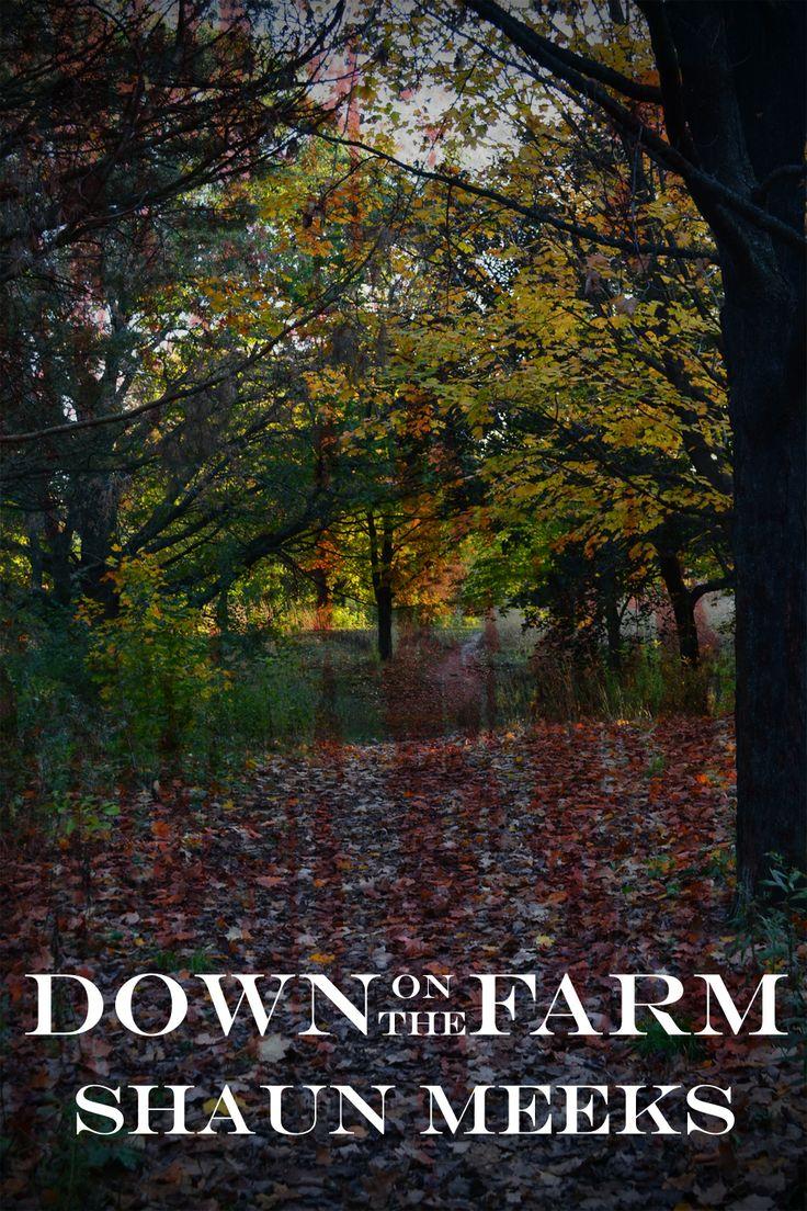 Down on the Farm a new novelette. www.shaunmeeks.com