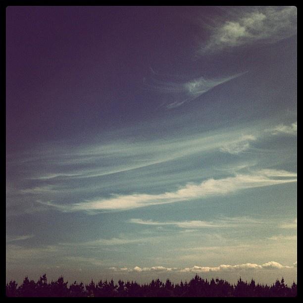 秋のよう。。。 - @niya96- #webstagram