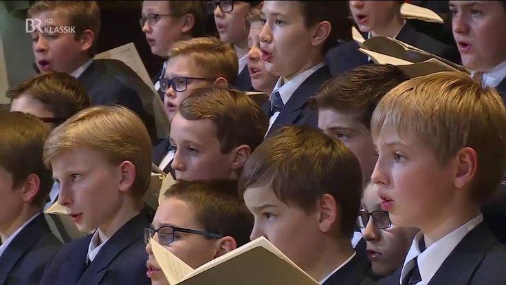 """Regensburger Domspatzen """"Missa in tempore belli"""" (Paukenmesse) Joseph Ha..."""