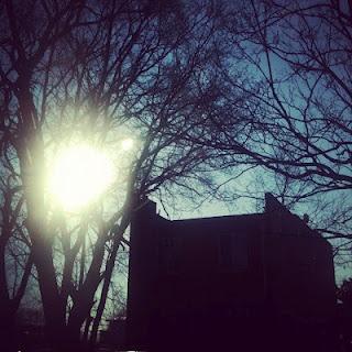 feb 8: the sun  #FEBphotoaday