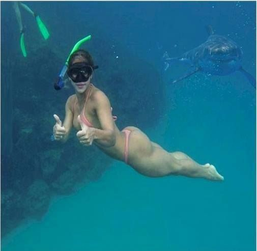 He swims. He kills. He photobombs. Snorkeler - Mayra Cardi, P'shopper and shark unknown. Please help us identify.