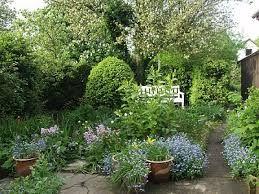 Billedresultat for haver med stedsegrønne planter